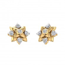 THE ASTER STUDS